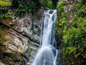 El Yunque Rainforest in Puerto Rico