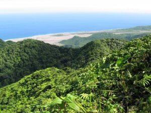Centre Hills in Montserrat