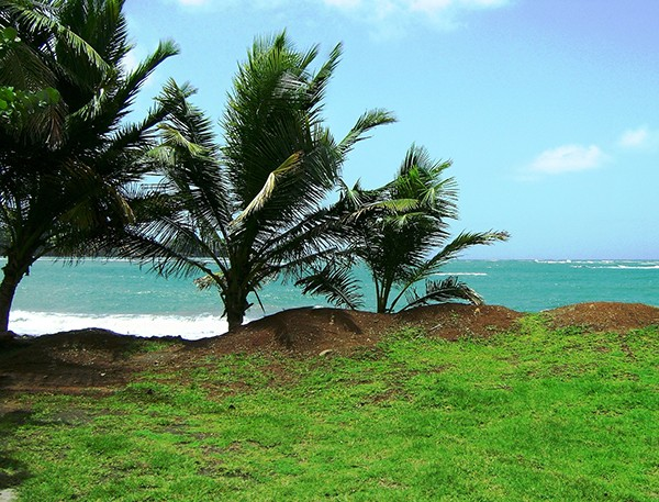 Grenada-SLIDE3