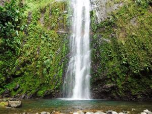 National Park in Guadeloupe
