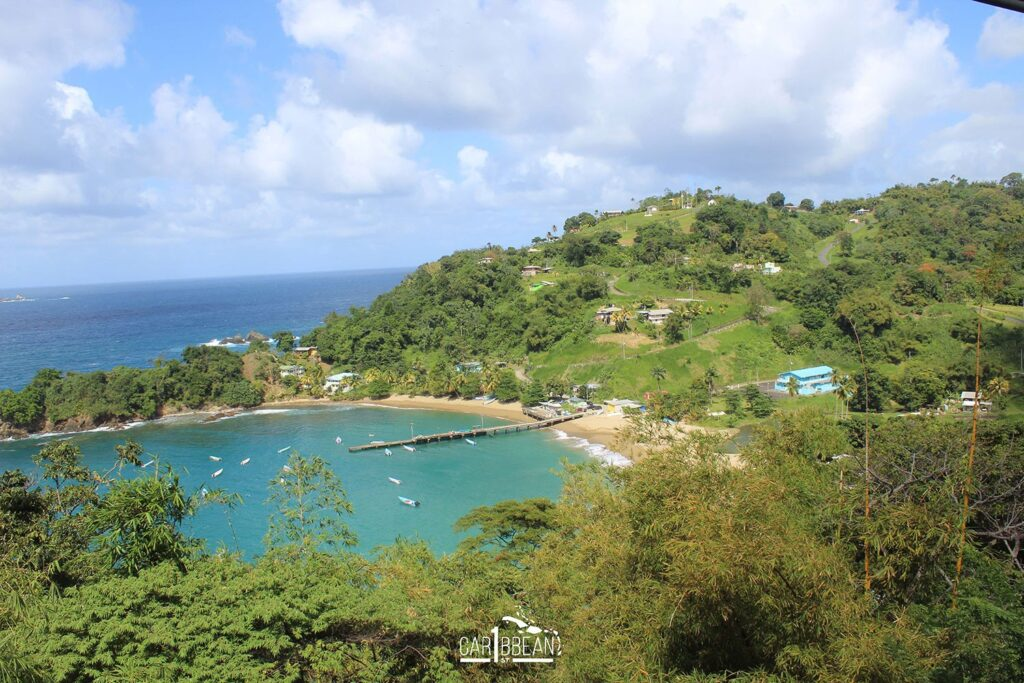A view of the coast of Tobago